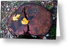 Twin Fallen Leaves Greeting Card