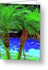Twin Palms 2 Greeting Card