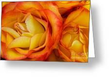 Twin Yellow Roses Greeting Card