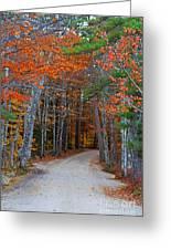 Twisting Road Of Fall Greeting Card