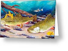 Two Brook Trout Greeting Card