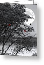 Two Cardinals In The Moonlight Greeting Card