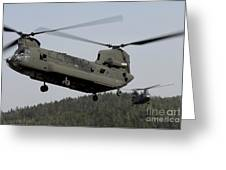 Two Ch-47 Chinook Helicopters In Flight Greeting Card