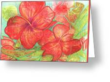 Two Hibiscus Blossoms Greeting Card