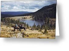 Two Horsemen Ride Above Pecos Baldy Greeting Card