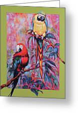 Captive Birds Of The Rain Forest Greeting Card