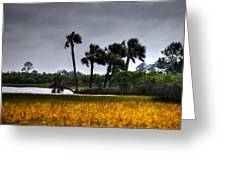 Two Mile Palms Greeting Card