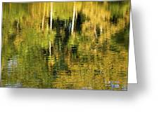 Two Palms Reflected In Water Greeting Card