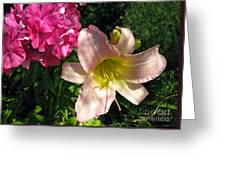 Two Pink Neighbors- Lily And Phlox Greeting Card