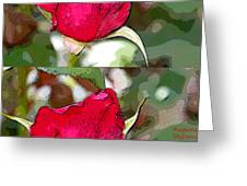 Two Rose Buds Greeting Card