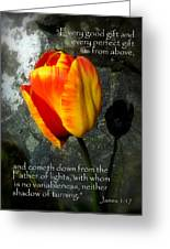 Two Tulips Shadow Scripture Greeting Card