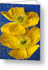 Two Yellow Iceland Poppies Greeting Card
