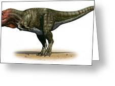 Tyrannosaurus Rex, A Prehistoric Era Greeting Card
