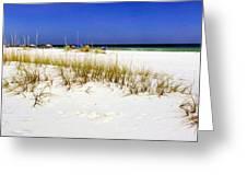 Umbrellas On The Beach Greeting Card