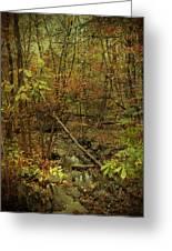 Unami Creek Feeder Stream In Autumn - Green Lane Pa Greeting Card