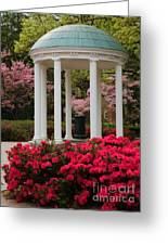 Unc Well In Spring Greeting Card