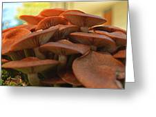 Under The Mushroom Mound Greeting Card