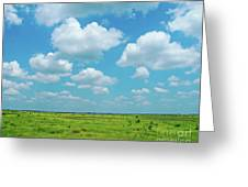 Under The Texas Sky Greeting Card