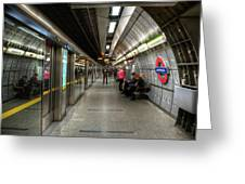Underground Life Greeting Card by Svetlana Sewell