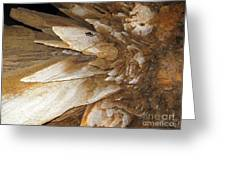 Underground Wonders. Luray Caverns Va Greeting Card