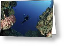 Underwater Photographer At The Entrance Greeting Card