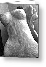 Undressed In Black And White Frontal View Greeting Card