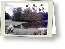 Unicorn Lake - Geese Greeting Card