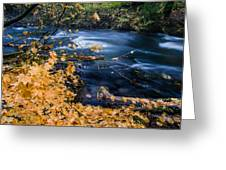 Union Creek In Autumn Greeting Card
