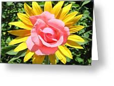 Unique Sun Rose Greeting Card