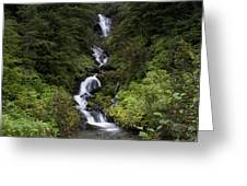 Unnamed Alaskian Falls Greeting Card