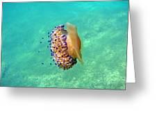 Unwelcome Jellyfish Greeting Card