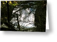 Upper Butte Creek Falls Through The Trees Greeting Card