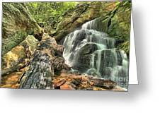 Upper Cascade Hidden Falls Greeting Card