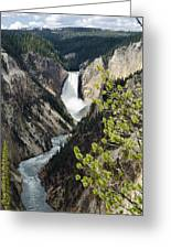 Upper Falls Of The Yellowstone River Greeting Card