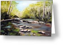 Upstate South Carolina Trout Stream Greeting Card