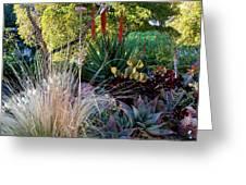 Urban Garden With Cactus Greeting Card