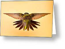 Usaf Hummingbirds Wings Greeting Card