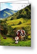 Vaca Greeting Card