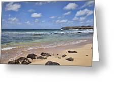 Vacation Destination Greeting Card