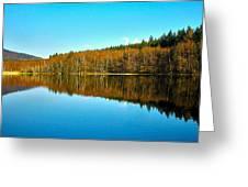 Vaclavsky Rybnik - Primda - Ceska Republika Greeting Card
