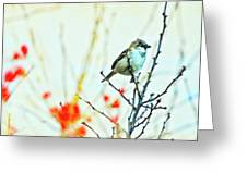 Valentine Sparrow  Greeting Card