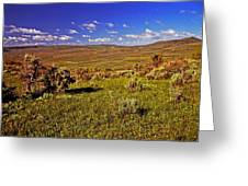 Valley At Fossil Butte Nm Greeting Card