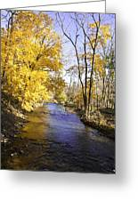 Valley Forge Creek In Autumn Greeting Card