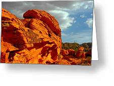 Valley Of Fire - Born To Be Wild Greeting Card by Christine Till