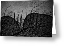 Valley Of Sticks Greeting Card