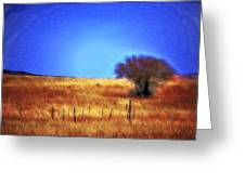Valley San Carlos Arizona Greeting Card