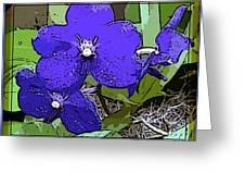 Vanda Greeting Card