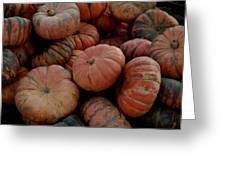 Varied Pumpkins Greeting Card