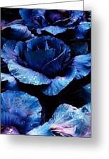 Vegetables, Red Cabbage Greeting Card