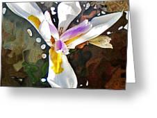 Venice Iris Greeting Card